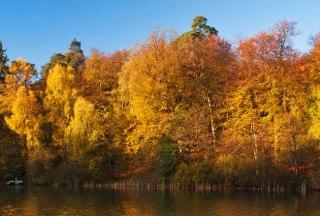 Herrliches Farbspiel am Garrensee im Herbst., © Thomas Ebelt, HLMS GmbH