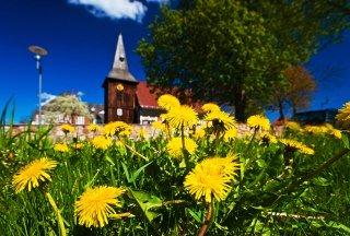 Die St. Salvatoriskirche in Geesthacht im Frühling, © Thomas Ebelt