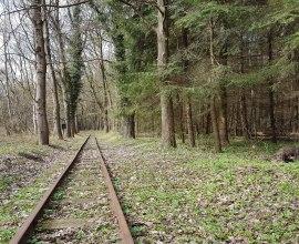 Blick auf die Strecke der Buchhorster Waldbahn