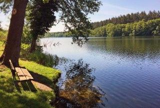 Am Ufer des Salemer Sees, © Natascha Pätzold