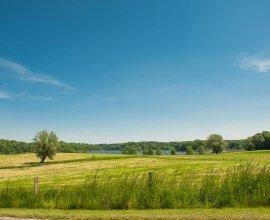 Blick auf den Behlendorfer See, © Nicole Franke