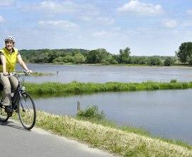 Radfahrer auf dem Elberadweg, © photocompany