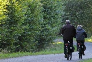 Mechower Wald mit Radfahrer, © Carina Jahnke/ HLMS