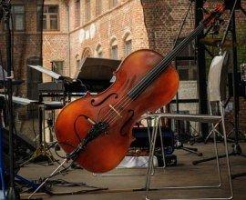 Vielfältige Konzerte erklingen im Herzogtum Lauenburg., © Nicole Franke