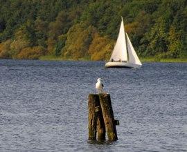Segelboot auf dem Domsee, © Jürgen Klemme/HLMS
