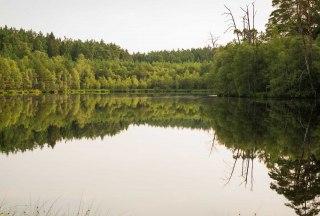 Schwarzsee bei Mölln, © Nicole Franke / HLMS GmbH