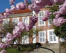 Das Kreismuseum auf der Ratzeburger Domhalbinsel schmückt sich mit den Blüten des Frühlings., © Carina Jahnke / HLMS GmbH