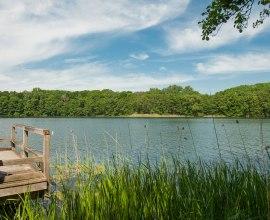 Behlendorfer See, © Nicole Franke