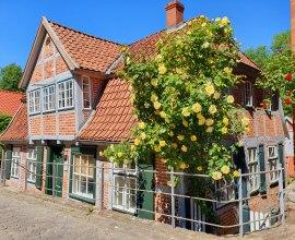 Fachwerk mit blühender Rosenpracht in Lauenburgs malerischer Altstadt, © Mareike Bodendieck