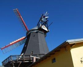 Die Riepenburger Mühle liegt in der Nähe vom Elberadweg und ist ein schöner Einkehrmöglichkeit auf der Elberadtour., © Tourist-Information Geesthacht