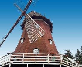 Der höchste Punkt der alten Schifferstadt bildet diese Lauenburger Mühle.